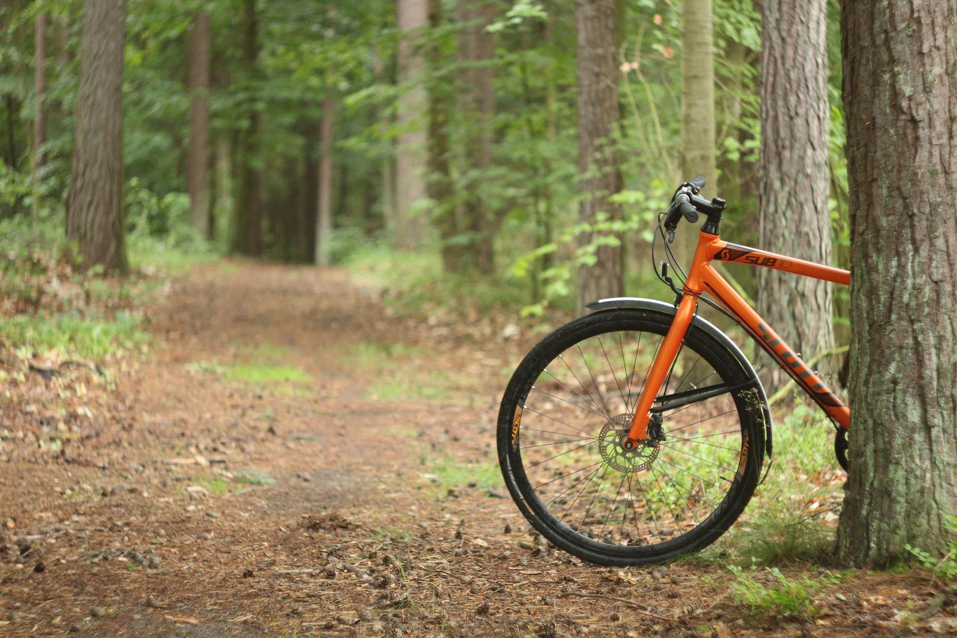 Bicycle Ride in  Park HaYarkon